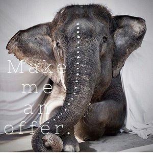 🐘 Make me an offer. 🐘
